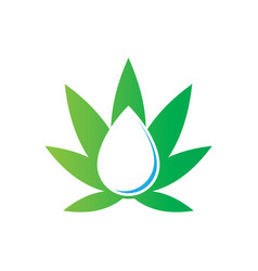 leaf nature water drop logo vector image