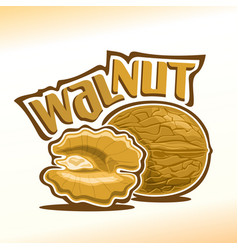 Logo for walnut nuts vector