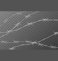 Several lines glossy realistic barbed wire on vector