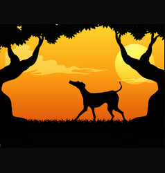 Silhouette scene with dog in the park at sunset vector