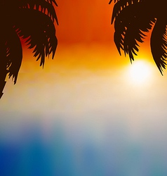 Sunset background with palm trees vector