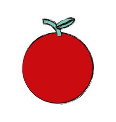 Tomato fresh vegetable vector