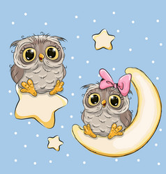 valentine card with lovers owls on a moon and star vector image