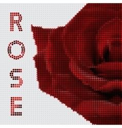 Screw design - rose vector image