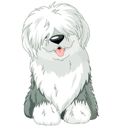 Old English Sheepdog vector image vector image
