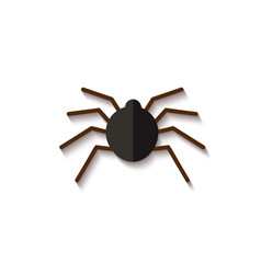 black paper spider spooky and scary insect for vector image