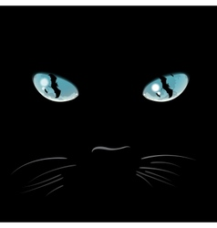 Closeup portrait of a Halloween black cat vector image