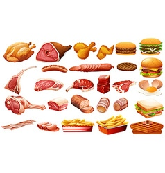 Different kind of meat and food vector image