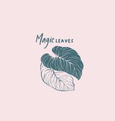 exotic magic leaves logo layout vector image