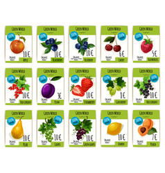 fruit and berry price tag label product card set vector image