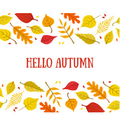 hello autumn banner template with bright colorful vector image