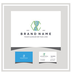 Letter c dna logo design with business card vector