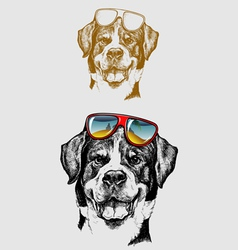The cool dog hand drawing vector