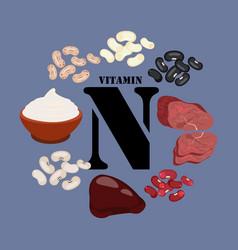 Vitamin n healthy nutrient rich food vector