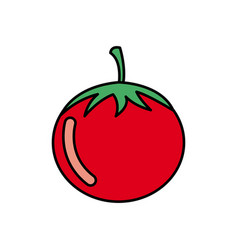 colorful vegetable tomato icon vector image vector image