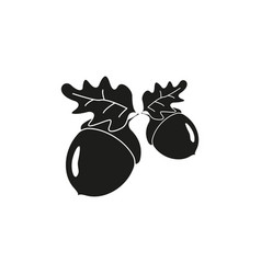 acorn of strong oak icons of black vector image