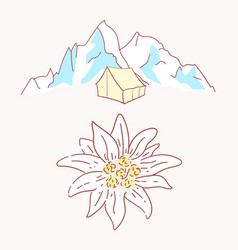 edelweiss tent hiking mountains flower symbol vector image