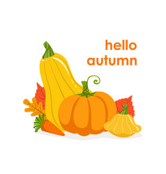 hello autumn banner template seasonal poster with vector image