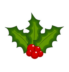 holly berry christmas leaves and fruits icon vector image
