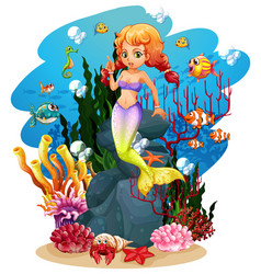 Mermaid and many fish in ocean vector