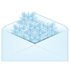 Snowflake in envelope vector image