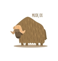 Musk Ox vector image