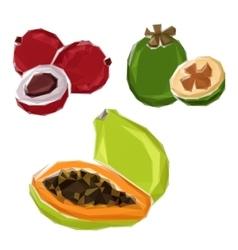 Polygonal tropical papaya feijoa lychee fruits vector image vector image