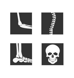 medical orthopedic of set vector image vector image