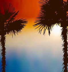 Tropical palm trees sunset background vector image