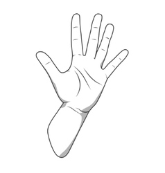 Palm hand number five gesture vector image