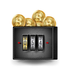 Realistic bitcoin wallet locked with vector