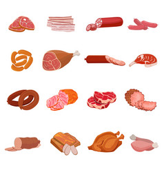 set meat products roast chicken and prime rib vector image