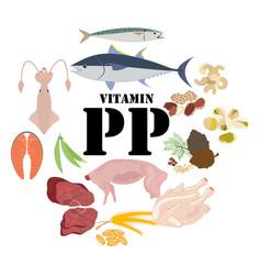 Vitamin pp healthy nutrient rich food vector