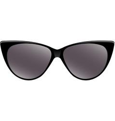 black sunglasses vector image