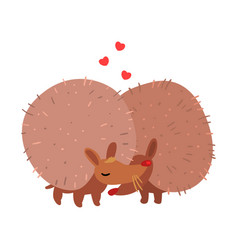 Couple of cute hedgehogs in love embracing each vector