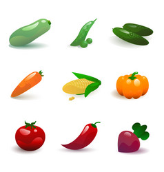 vegetable set vector image