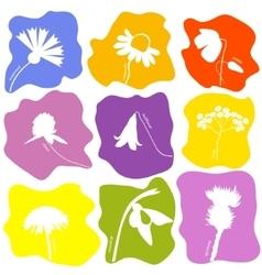 Wild flowers icons set vector