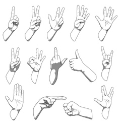 Different hands gestures vector image vector image