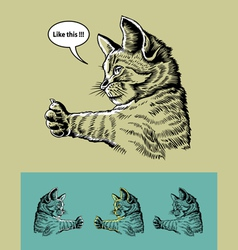 Thumb up cat vector image vector image