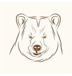 Bear free spirit sketch image vector