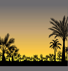 Card with palm trees silhouette on sunset vector