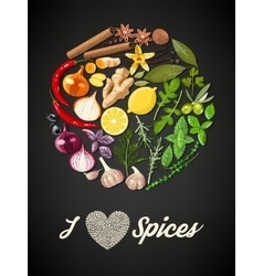 Circle of spices vector
