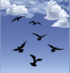 flock of bird flying blue sky background animal vector image
