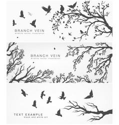 forest and birds banner for facebook design vector image