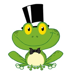 Frog Groom vector