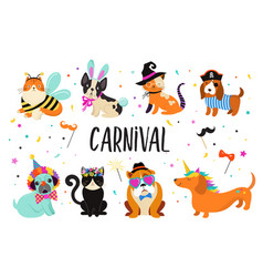 Funny animals pets cute dogs and cats vector