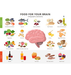 Healthy food and bad food for brains infographic vector