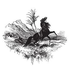Riderless horse vintage vector