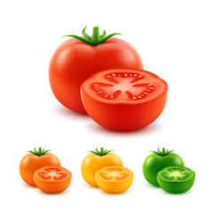 Set of red prange yellow green cut whole tomatoes vector