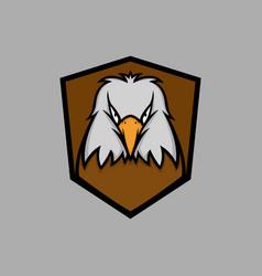 white head eagle mascot logo vector image